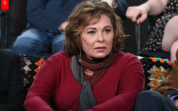 Roseanne Barr Net Worth and her Salary